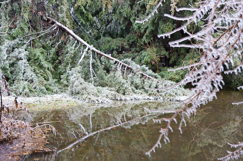 Lindsborg ice storm