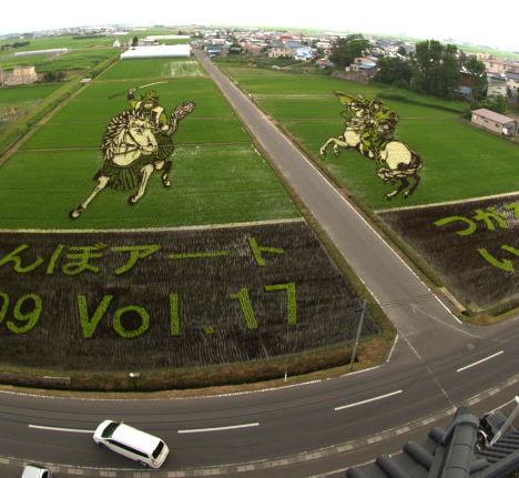rice paddy art 2009