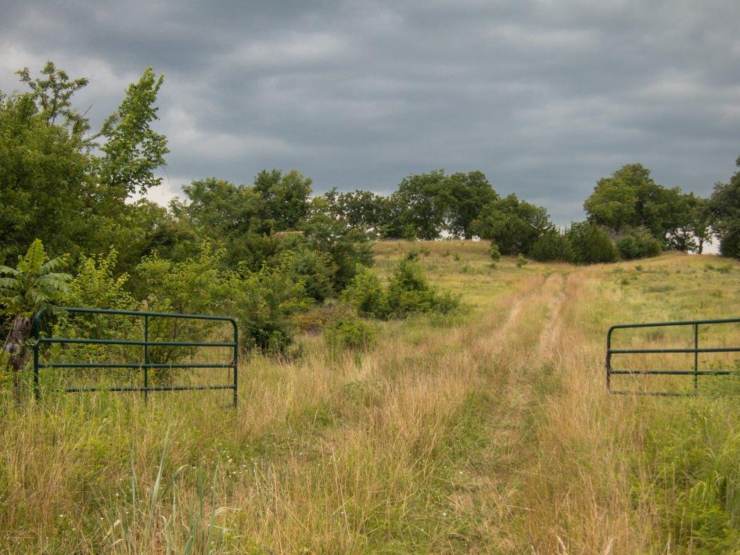 Prairie Spirit Trail, Pastoral View II