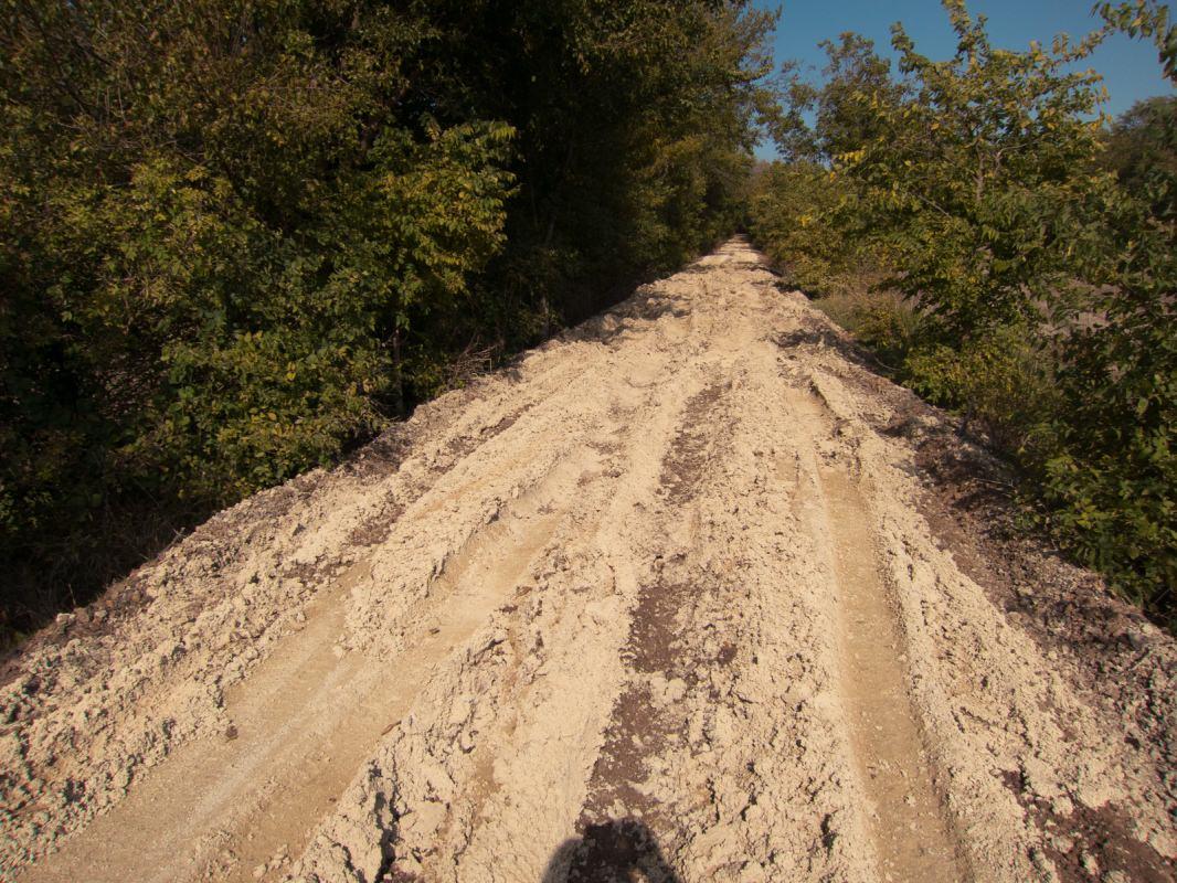 Meadowlark Trail: deep ruts
