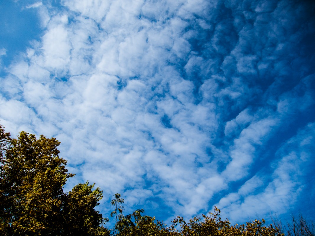 Meadowlark Trail: awesome skies