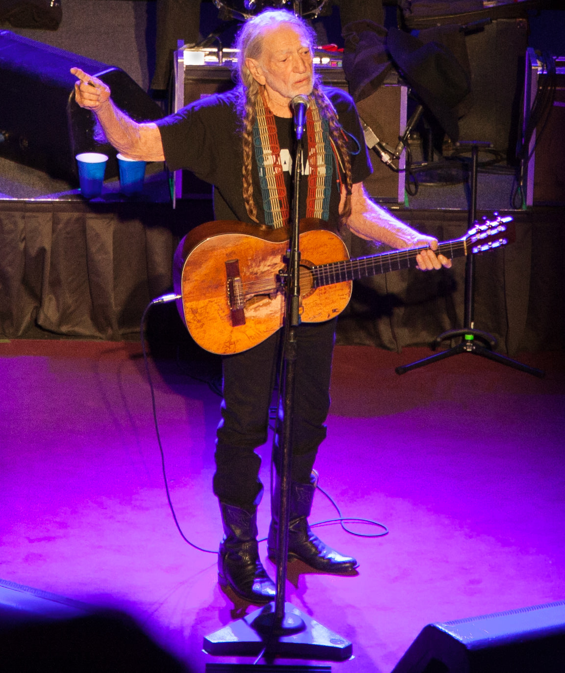 Willie Nelson, Stiefel Theater, Salina KS